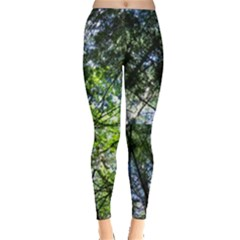 Green Trees Against A Blue Sky Leggings