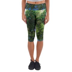 Trees Over A Pond Capri Yoga Leggings