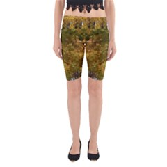 Vermont Autumn Tree Yoga Cropped Leggings