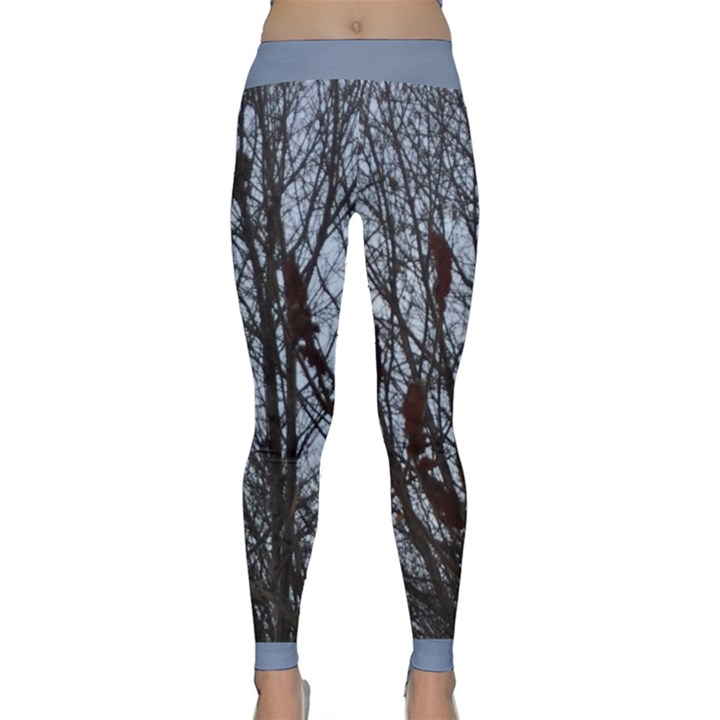 Snow and an Almost Barren Tree Classic Yoga Leggings