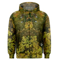 Tree With Green & Yellow Leaves Men s Zipper Hoodie