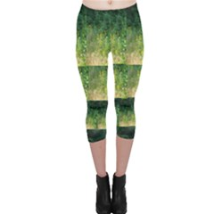 Greenery And Black-eyed Susans Capri Leggings  by SusanFranzblau