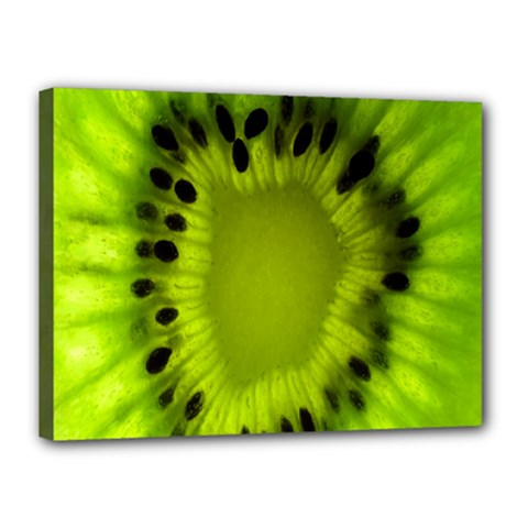 Kiwi Fruit Slices Cut Macro Green Canvas 16  X 12  by Alisyart