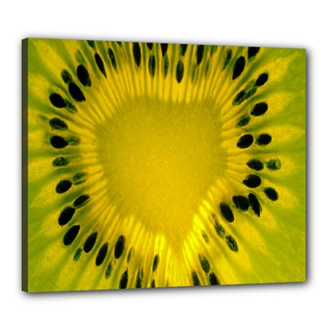 Kiwi Fruit Slices Cut Macro Green Yellow Canvas 24  X 20  by Alisyart