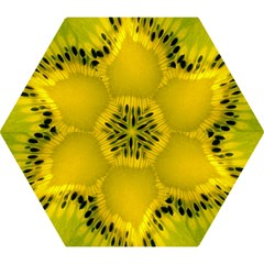 Kiwi Fruit Slices Cut Macro Green Yellow Mini Folding Umbrellas by Alisyart