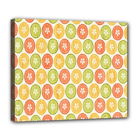 Lime Orange Fruit Slice Color Deluxe Canvas 24  X 20