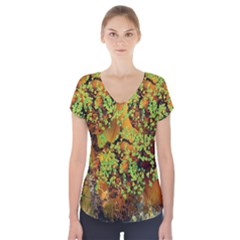 Backdrop Background Tree Abstract Short Sleeve Front Detail Top by Nexatart