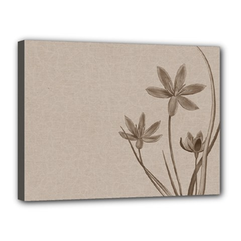 Background Vintage Drawing Sepia Canvas 16  X 12