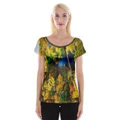 Bridge River Forest Trees Autumn Women s Cap Sleeve Top by Nexatart