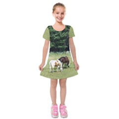 Horses Kids  Short Sleeve Velvet Dress by SusanFranzblau