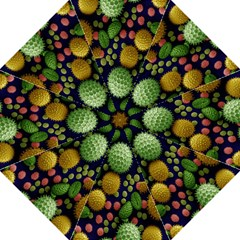 Colorized Pollen Macro View Hook Handle Umbrellas (large) by Nexatart