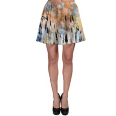 Landscape Sunset Sky Summer Skater Skirt by Nexatart