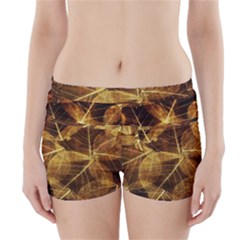 Leaves Autumn Texture Brown Boyleg Bikini Wrap Bottoms by Nexatart
