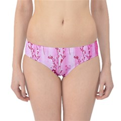 Pink Curtains Background Hipster Bikini Bottoms