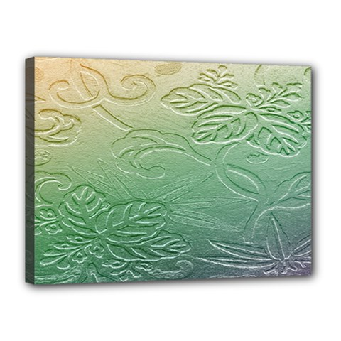 Plants Nature Botanical Botany Canvas 16  X 12  by Nexatart