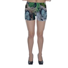 Plant Succulent Plants Flower Wood Skinny Shorts by Nexatart