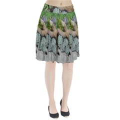 Plant Succulent Plants Flower Wood Pleated Skirt by Nexatart