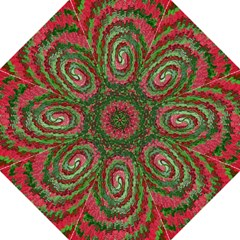 Red Green Swirl Twirl Colorful Hook Handle Umbrellas (large) by Nexatart