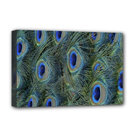 Peacock Feathers Blue Bird Nature Deluxe Canvas 18  X 12