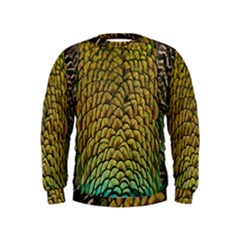 Peacock Bird Feather Gold Blue Brown Kids  Sweatshirt