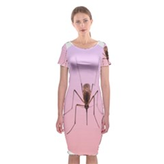 Mosquito Pink Insect Blood Classic Short Sleeve Midi Dress