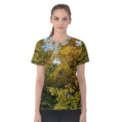 Tree In Early Autumn With Kitty Women s Cotton Tee by SusanFranzblau