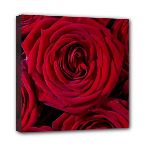 Roses Flowers Red Forest Bloom Mini Canvas 8  x 8