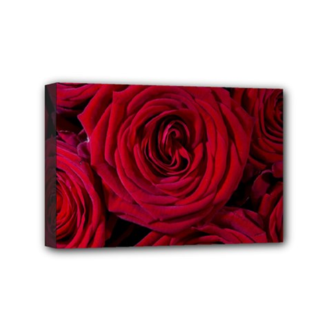 Roses Flowers Red Forest Bloom Mini Canvas 6  x 4