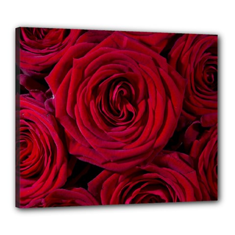 Roses Flowers Red Forest Bloom Canvas 24  x 20