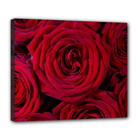 Roses Flowers Red Forest Bloom Deluxe Canvas 24  x 20