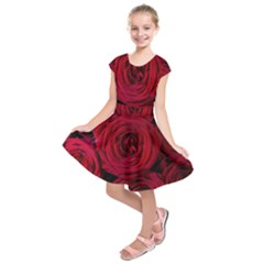 Roses Flowers Red Forest Bloom Kids  Short Sleeve Dress