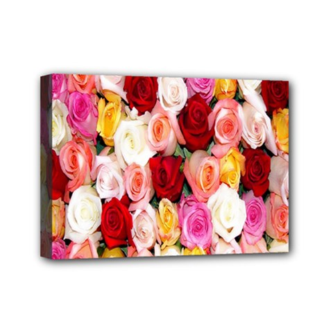 Rose Color Beautiful Flowers Mini Canvas 7  X 5