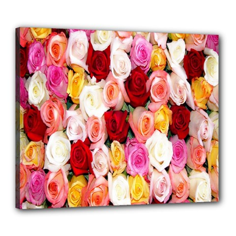Rose Color Beautiful Flowers Canvas 24  X 20