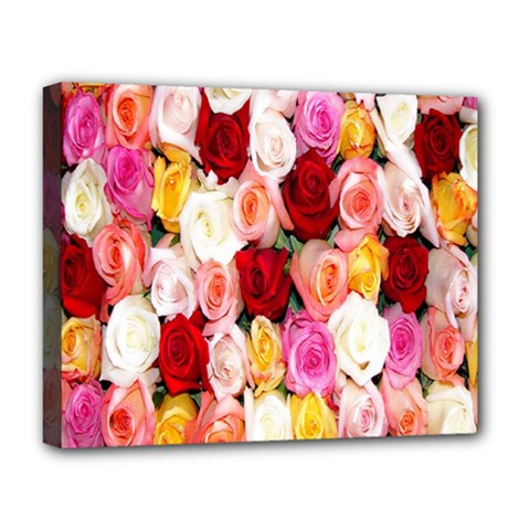 Rose Color Beautiful Flowers Deluxe Canvas 20  X 16   by Amaryn4rt
