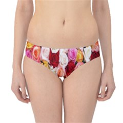 Rose Color Beautiful Flowers Hipster Bikini Bottoms