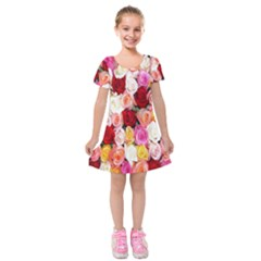 Rose Color Beautiful Flowers Kids  Short Sleeve Velvet Dress