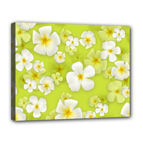 Frangipani Flower Floral White Green Canvas 14  X 11  by Alisyart