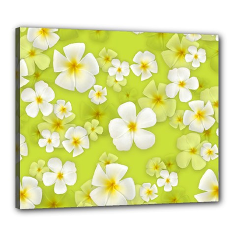 Frangipani Flower Floral White Green Canvas 24  X 20
