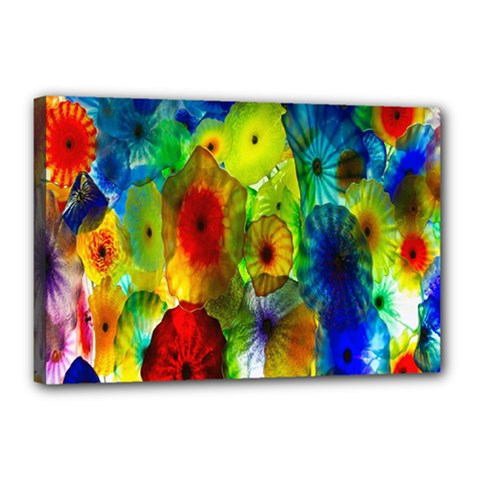 Green Jellyfish Yellow Pink Red Blue Rainbow Sea Canvas 18  X 12
