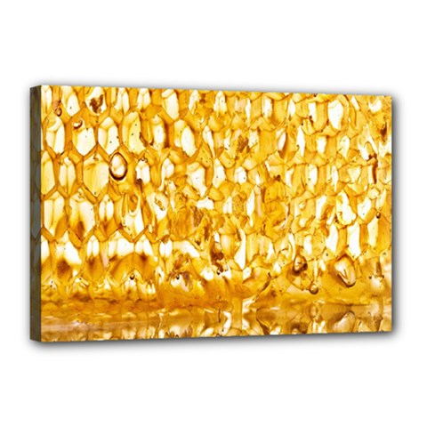 Honeycomb Fine Honey Yellow Sweet Canvas 18  X 12