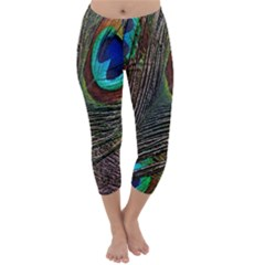 Peacock Feathers Capri Winter Leggings
