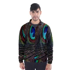 Peacock Feathers Wind Breaker (men)