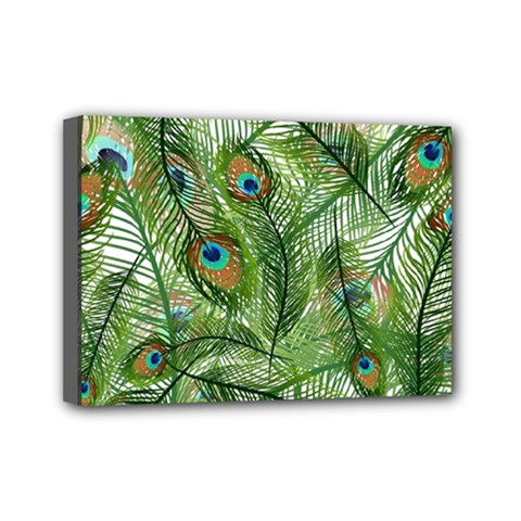 Peacock Feathers Pattern Mini Canvas 7  X 5