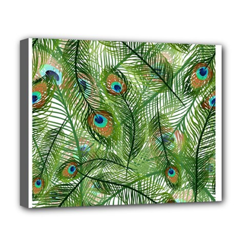 Peacock Feathers Pattern Deluxe Canvas 20  X 16