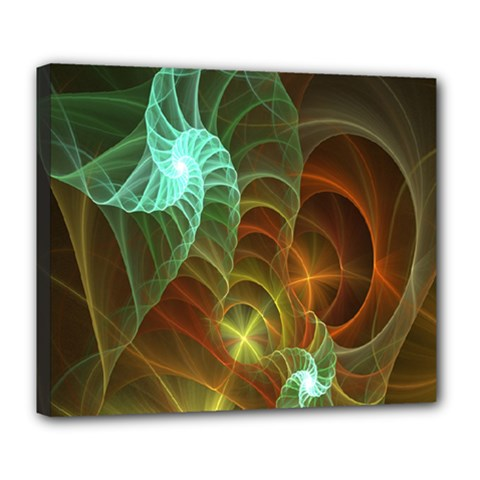 Art Shell Spirals Texture Deluxe Canvas 24  X 20   by Simbadda