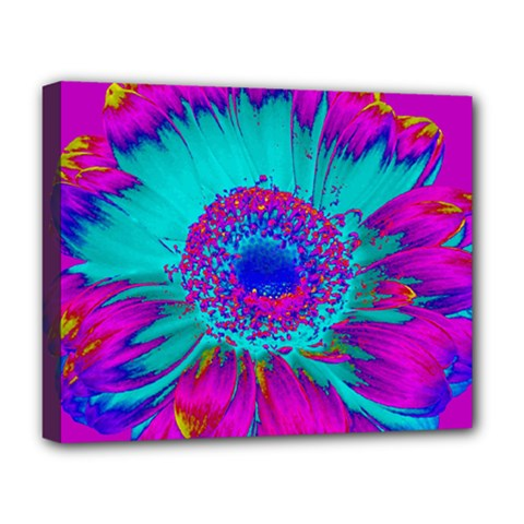 Retro Colorful Decoration Texture Deluxe Canvas 20  X 16   by Simbadda