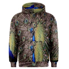 Multi Colored Peacock Men s Pullover Hoodie