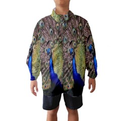 Multi Colored Peacock Wind Breaker (kids)