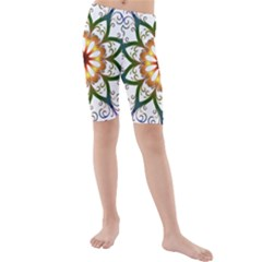 Prismatic Flower Floral Star Gold Green Purple Kids  Mid Length Swim Shorts by Alisyart