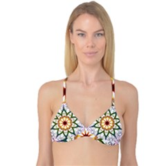 Prismatic Flower Floral Star Gold Green Purple Reversible Tri Bikini Top by Alisyart